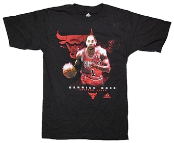 Derrick Rose Chicago Bulls Black Adidas Smoke and Mirrors T-Shirt (Adult L)