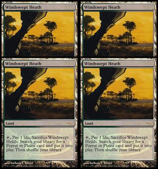 Magic the Gathering Promo Judge Foil Windswept Heath PLAYSET - NEAR MINT to MODERATE PLAY NM/SP/MP