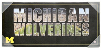 Michigan Wolverines Artissimo Team Pride 12x26 Canvas
