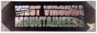 West Virginia Mountaineers Artissimo Team Pride 30x10 Canvas