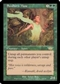 Magic the Gathering Legions Single Seedborn Muse - NEAR MINT (NM)