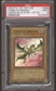 Yu-Gi-Oh BEWD 1st Ed. Single Curse of Dragon Super Rare PSA 9