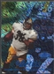 1998 Flair Showcase #33 Jerome Bettis Legacy Collection Row 1 #088/100