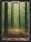 Magic the Gathering Unhinged Single Forest - NEAR MINT (NM)