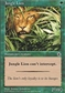 Magic the Gathering Portal 1 Single Jungle Lion - NEAR MINT (NM)
