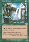 Magic the Gathering 6th Edition Single Elder Druid UNPLAYED (NM/MT)