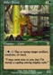Magic the Gathering 7th Edition Single Elder Druid UNPLAYED (NM/MT)