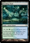 Magic the Gathering Dissension Single Breeding Pool - NEAR MINT (NM)