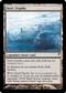 Magic the Gathering Coldsnap Single Dark Depths Foil