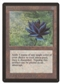 Magic the Gathering Beta Single Black Lotus - NEAR MINT (NM)