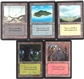 Magic the Gathering Beta Lot of 50 NM Basics (10 matching art per basic!!!)
