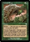 Magic the Gathering Invasion Single Canopy Surge FOIL