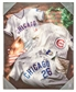Artissimo Chicago Cubs Jersey Collage 16x20 Canvas