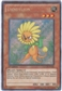Yu-Gi-Oh Legendary Collection 2 Single Dandylion Secret Rare