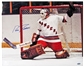 Eddie Giacomin Autographed New York Rangers 16x20 Photo (Steiner)