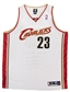 Lebron James Autographed Cleveland Cavaliers Stat Jersey #/50 (UDA COA)