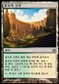 Magic the Gathering Born of the Gods KOREAN Single Temple of Plenty - NEAR MINT (NM)