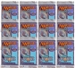 Magic the Gathering Nemesis Booster Pack (Lot of 12) - Chinese Edition