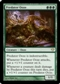 Magic the Gathering Dark Ascension Single Predator Ooze UNPLAYED (NM/MT)