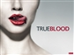 True Blood Series 2 Archives Trading Cards Pack (Rittenhouse 2013)