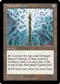 Magic the Gathering Visions Single Wand of Denial UNPLAYED (NM/MT)